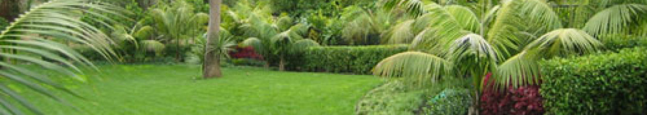 Landscape and Garden Maintenance From Westville and Pinetown to Kloof , Hillcrest and Assagay